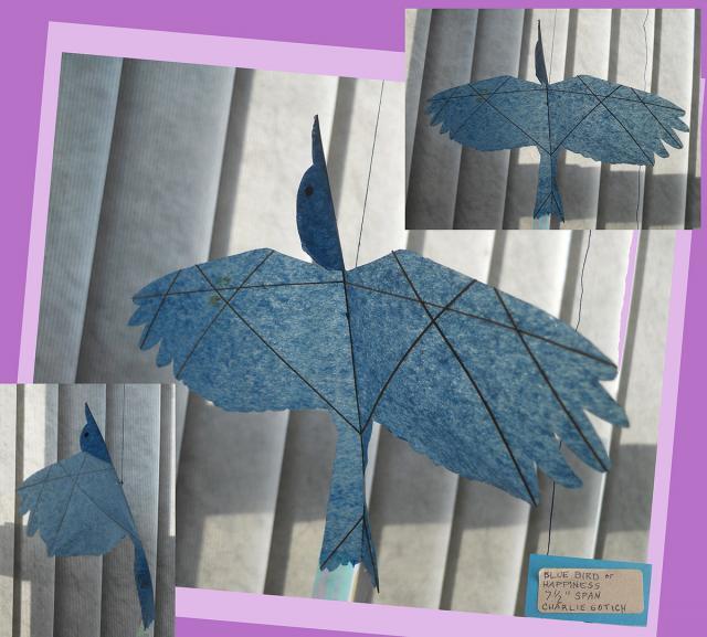 CS  Blue Bird