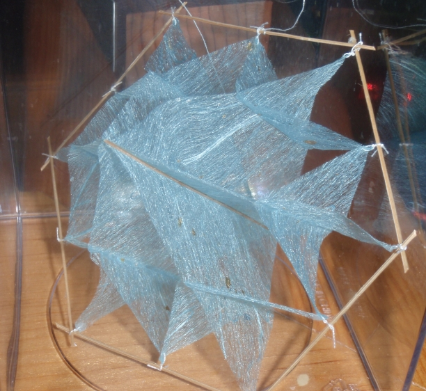 Blue 6-sided 2-level Facet