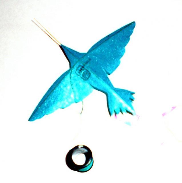 Charlie Bird #2