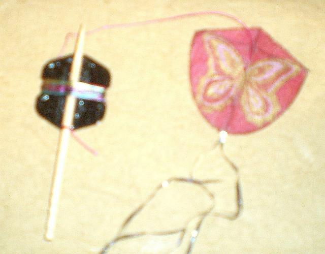 Pink & Gold Butterfly